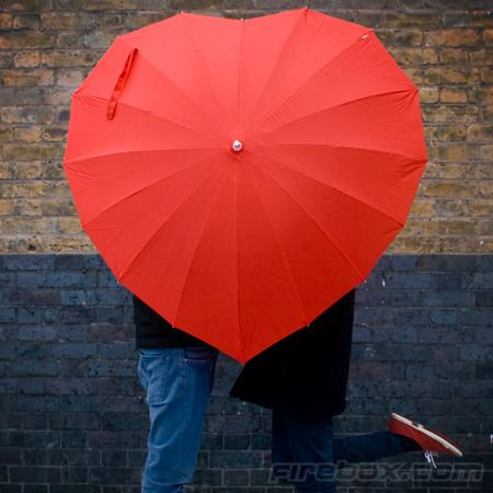 Heart Shaped Umbrella $67.32