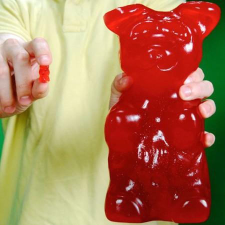 World's Largest Gummy Bear $34.00